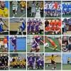 Thumb Calcio5 2011