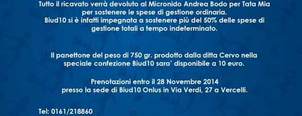 Foto Panettoni X A5